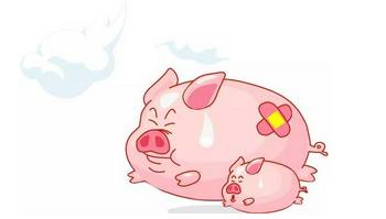 快速檢測非洲豬瘟解決方案